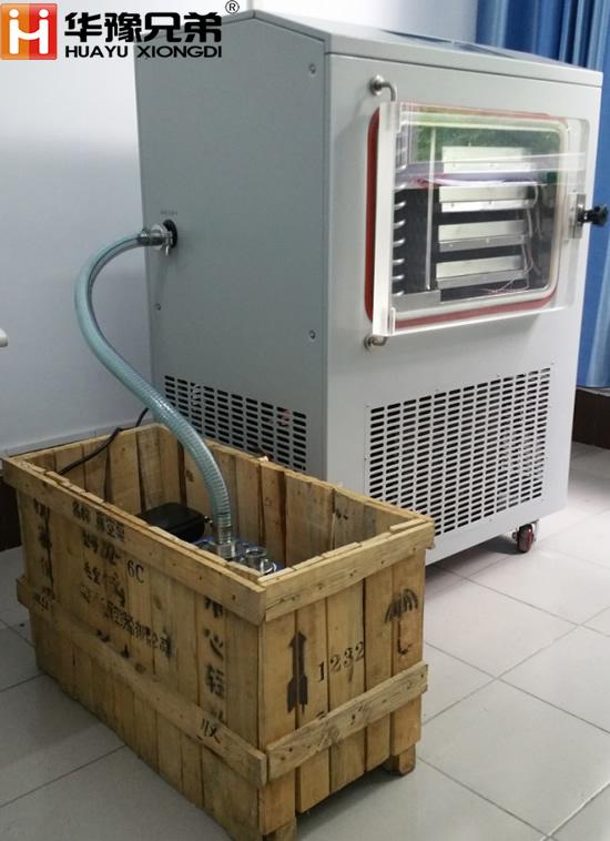 LGJ-30FD(电加热)原位冷冻干燥机